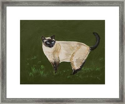 Sweetest Siamese Framed Print by Leslie Allen