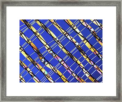 Synthetic Fibre, Light Micrograph Framed Print by Pasieka