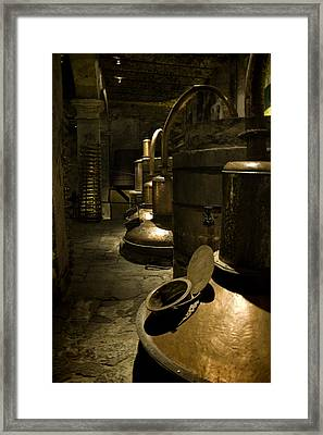 Tequilera No. 1 Framed Print by Lynn Palmer