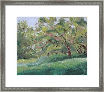 The Apple Tree Framed Print by Francois Fournier