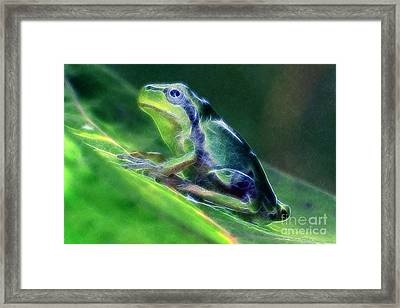 The Frog Framed Print by Odon Czintos