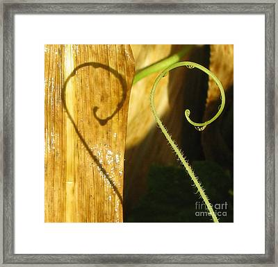 Unmistaken Framed Print by Tina Marie