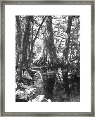 Untitled Framed Print by Betsy  Kennedy