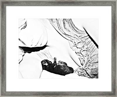 Untitled Framed Print by Heather  Boyd