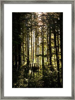 Untitled Framed Print by Kimberly Deverell