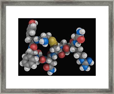 Vasopressin Hormone Molecule Framed Print by Laguna Design