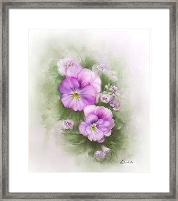 Viola Framed Print by Bonnie Willis