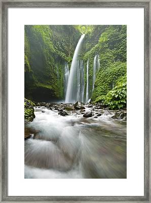 Waterfall Framed Print by Ng Hock How