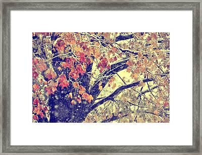 Winter Autumn Snows Framed Print by JAMART Photography