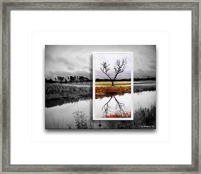 X Marks The Spot Framed Print by Brian Wallace