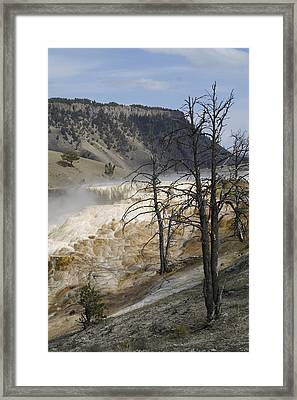 Yellowstone Nat'l Park Framed Print