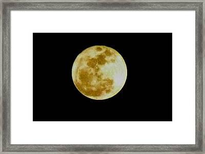 2011 Full Moon Framed Print by Maria Urso