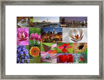 2012 Photography Artwork Highlights Framed Print by Juergen Roth