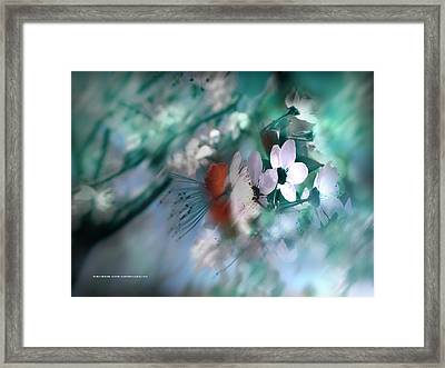 Framed Print featuring the photograph 2012 Spring by Alfonso Garcia