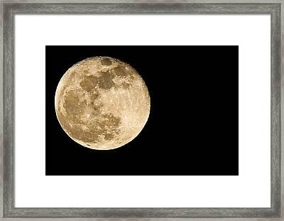 2012 Super Moon Framed Print by Elizabeth Hart