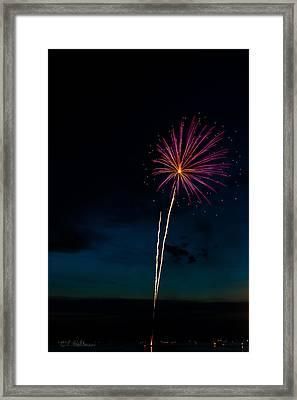 20120706-dsc06444 Framed Print by Christopher Holmes
