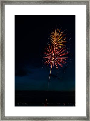 20120706-dsc06445 Framed Print by Christopher Holmes