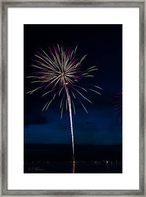 20120706-dsc06447 Framed Print by Christopher Holmes