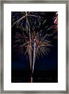 20120706-dsc06456 Framed Print by Christopher Holmes