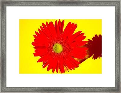 2024a2-001 Framed Print by Kimberlie Gerner