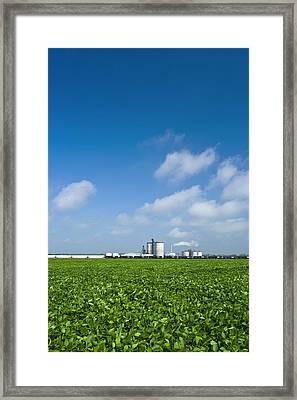 Corn Ethanol Processing Plant Framed Print by David Nunuk