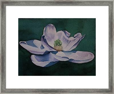 2.29.12 Steel Magnolia Framed Print