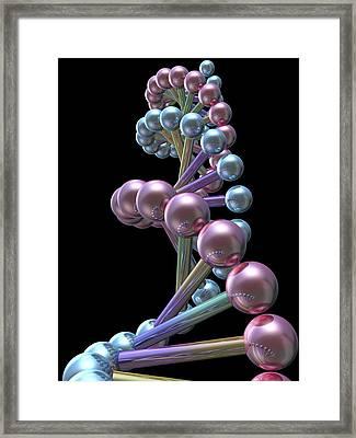 Dna Molecule, Computer Artwork Framed Print