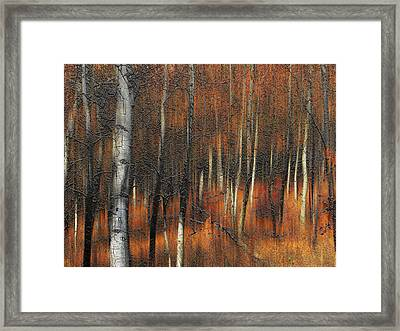 2385 Framed Print by Peter Holme III