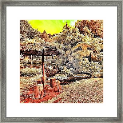 Love This Picture? Check Out My Gallery Framed Print