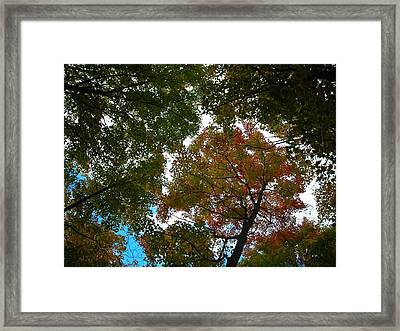 25. September Framed Print by Juergen Weiss