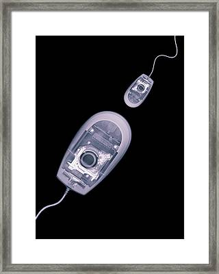 Computer Mice, X-ray Artwork Framed Print by Mark Sykes