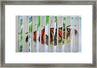 3 D Caterpillar And Butterfly Framed Print