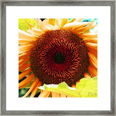 Delightful Framed Print by Christine Belt