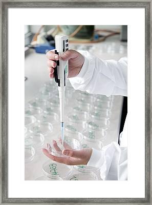 Drinking Water Testing Framed Print