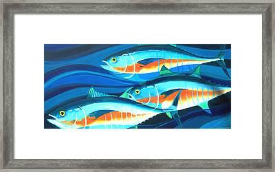 3 Fish School Framed Print by Mark Jennings