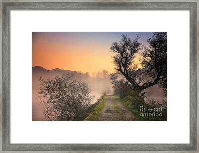 Foggy Road Framed Print