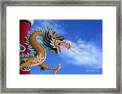Giant Golden Chinese Dragon Framed Print by Anek Suwannaphoom