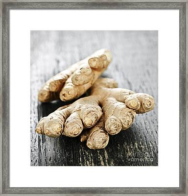 Ginger Root Framed Print by Elena Elisseeva