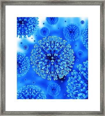 Herpes Virus Particles, Artwork Framed Print by Mehau Kulyk