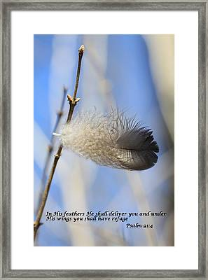 In His Feathers Framed Print by Rick Rauzi