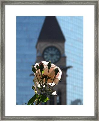 Nature With Architecture Framed Print by Alfred Ng