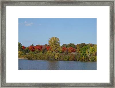 October In Michigan Framed Print by Margrit Schlatter