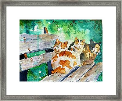 3 On A Bench Framed Print