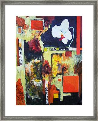 Orchidee Framed Print