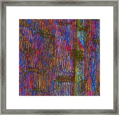 Pine Wood Structure, Light Micrograph Framed Print by Dr Keith Wheeler