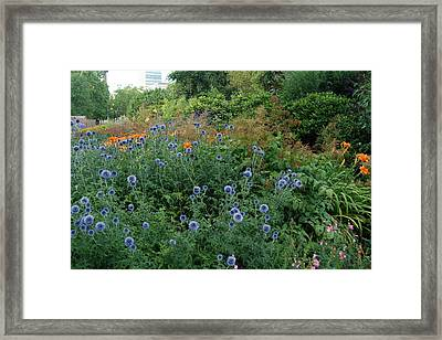 St. James Park London Framed Print by Harvey Barrison