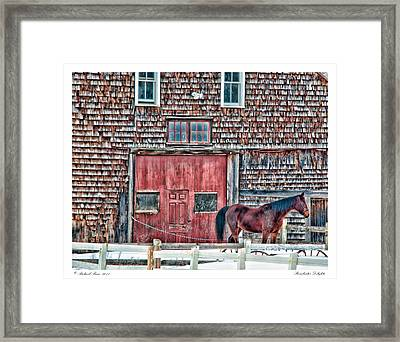 Stoudwater Delight Framed Print