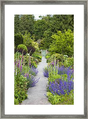 The Gardens Of Royal Roads University Framed Print by Taylor S. Kennedy