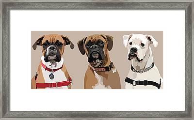 Three Boxers Framed Print