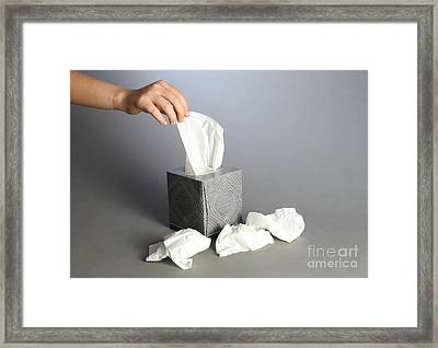 Tissues Framed Print by Photo Researchers, Inc.